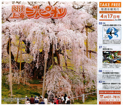 20090417takizakura_japion.jpg